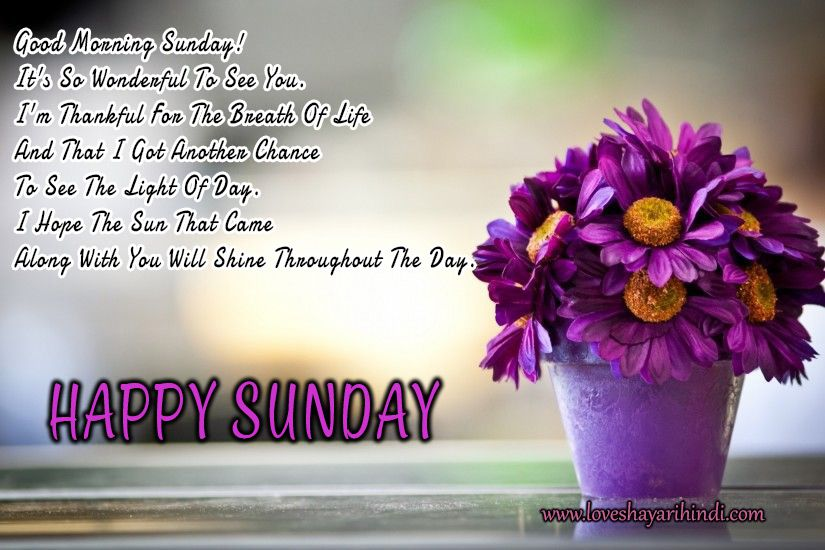 Happy Sunday Sms, Messages And Shayari, Status in English