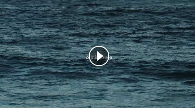 JAY DAVIES NATIVE Trailer