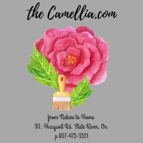 Visit our store, The Camellia, selling Cottage Paint, Home Decor, Table linens, and Gifts