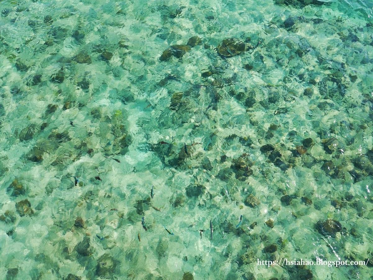 沖繩-海洋-海水-部瀨名海中公園-海中展望塔-玻璃船-ブセナ海中公園-自由行-旅遊-Okinawa-busena-park