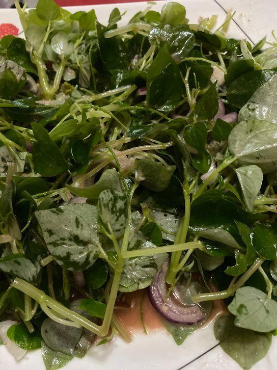 simple and delicious pansit-pansitan salad