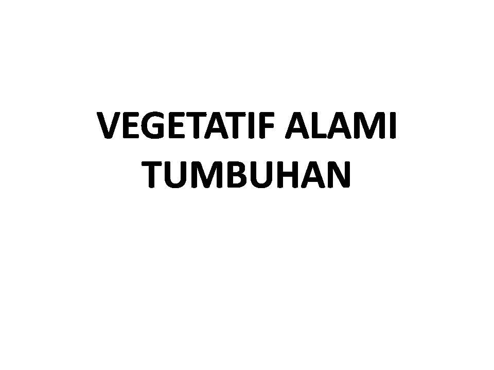 mathscienceelementary: VEGETATIF ALAMI PADA TUMBUHAN KELAS