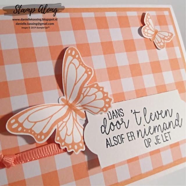 Stampin' Up! Vlinderdans en Gingham Gala DSP