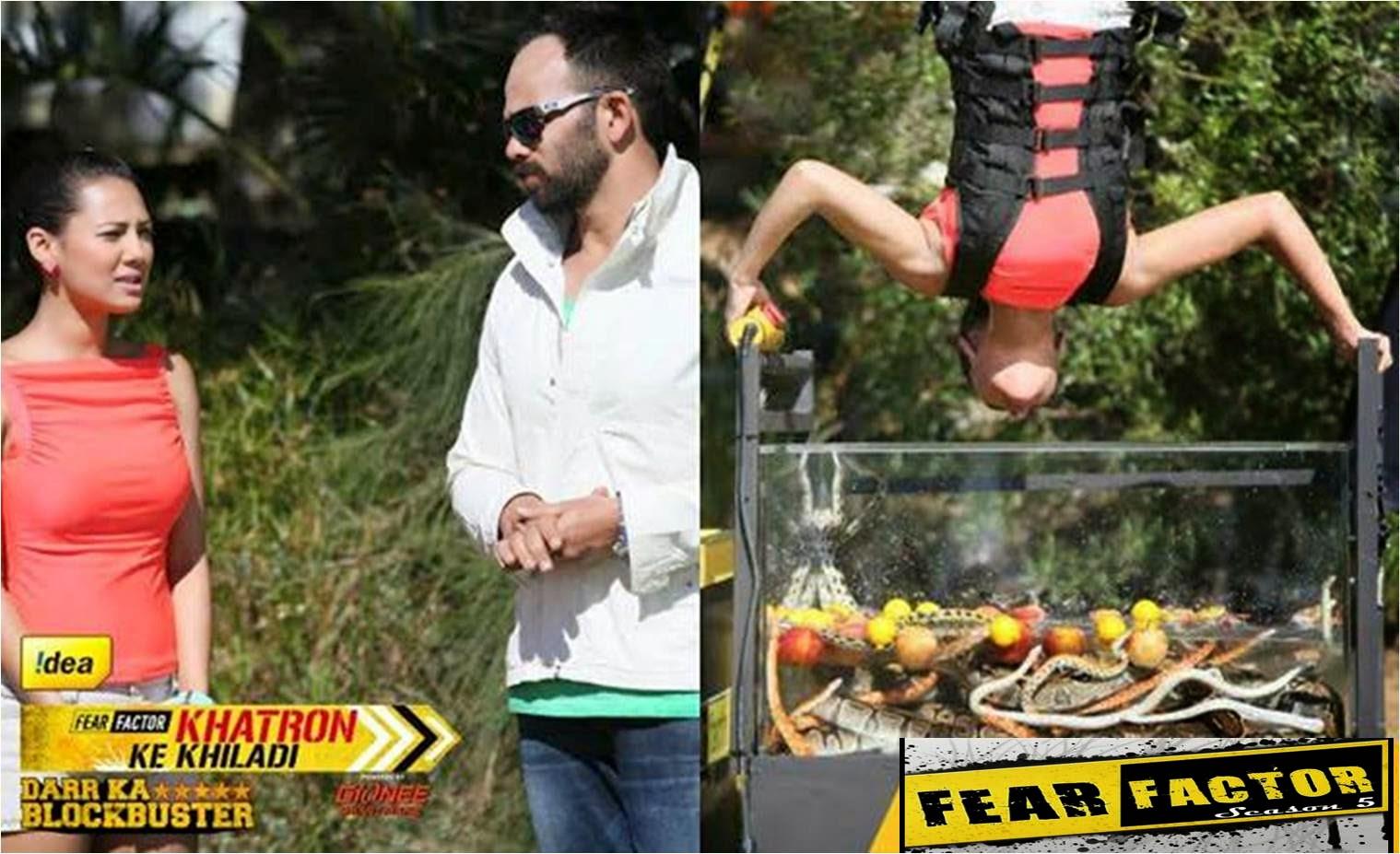 Khatron Ke Khiladi Rochelle finding objects from a glass tub of 80 snakes in a Darr Ka Blockbuster stunt