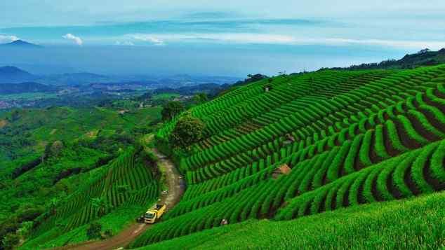 gambar pemandangan lembah panyaweuyan