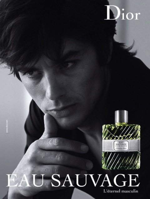 ALAIN DELON DIOR GT FASHION DIARY
