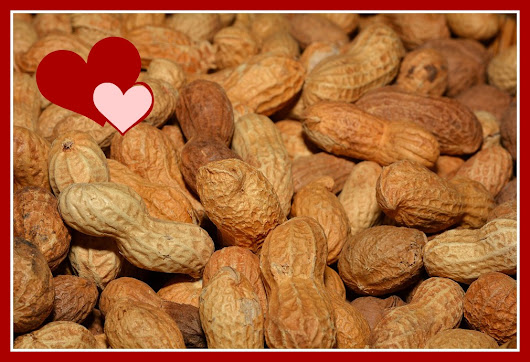 The special thing about shelled peanuts
