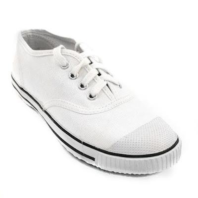 Men's Canvas Shoes Online