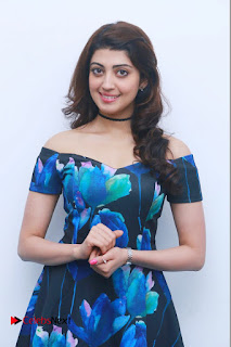 Actress Praneetha Latest Stills in Floral Short Dress at Enakku Vaaitha Adimaigal Press Meet  0004.jpg
