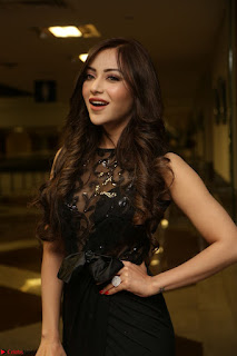 Angela Krislinzki in Transparent Black Gown at Rogue Movie Teaser Launch 1st March 2017 105.JPG