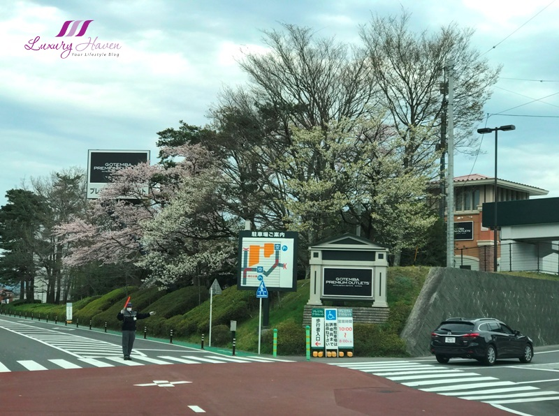 beautifu cherry blossom gotemba premium outlet shopping