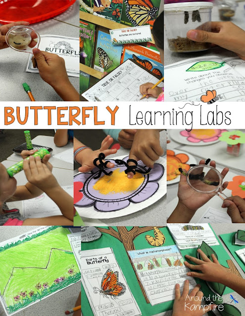Butterfly learning labs to integrate literacy, writing, and math during a life cycle of butterflies unit.