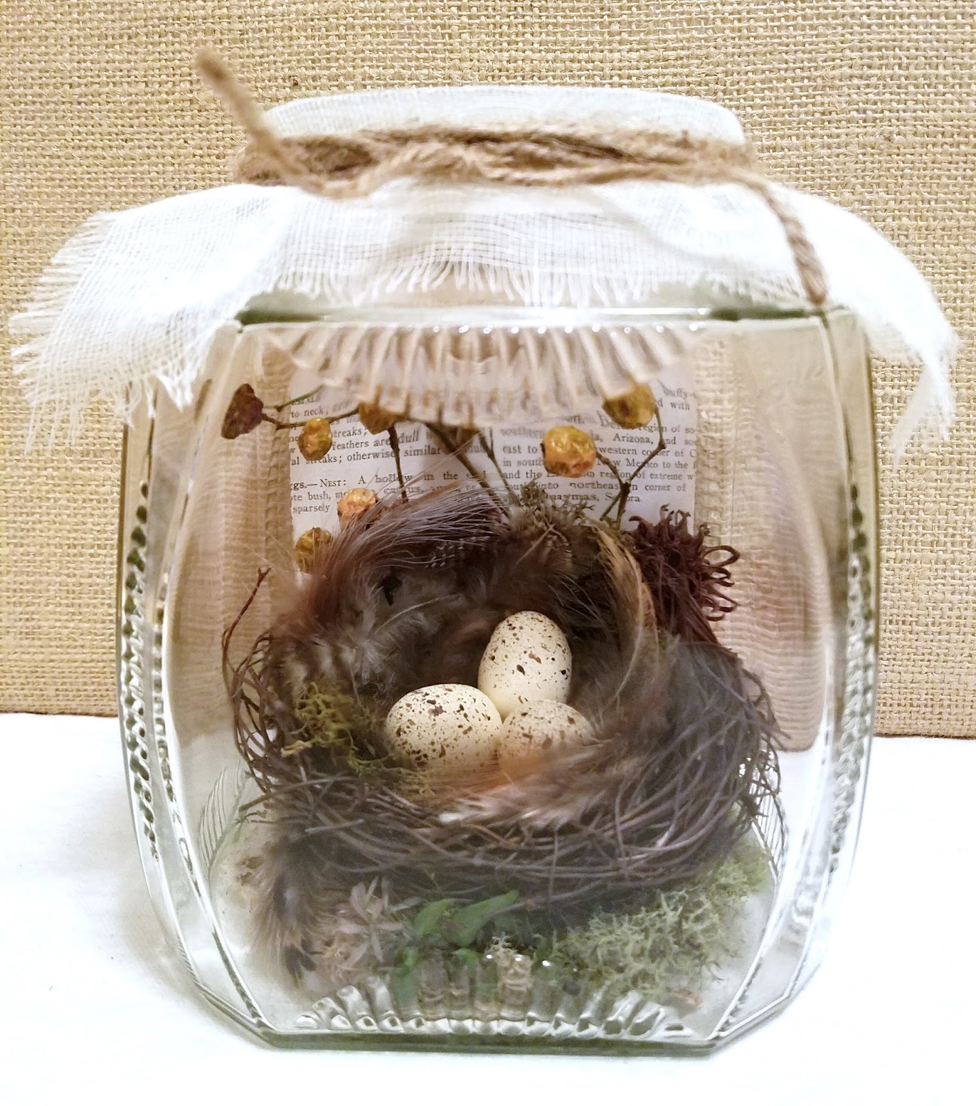 Three bird nest coupon code