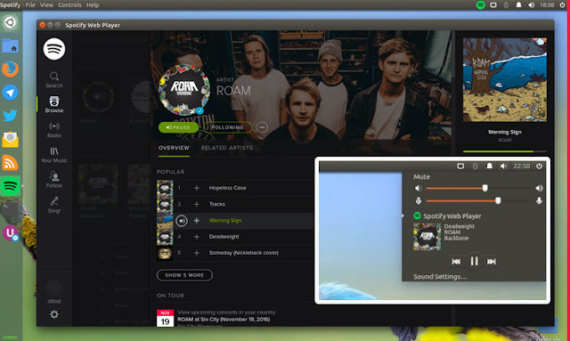 Spotify Web Player App