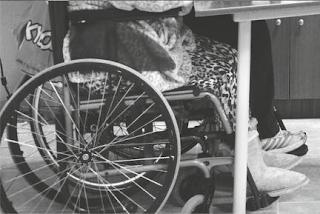 3η Δεκεμβρίου (ένα ποίημα για την παγκόσμια ημέρα ατόμων με αναπηρία)
