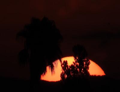 Sunrise 29/9/2016