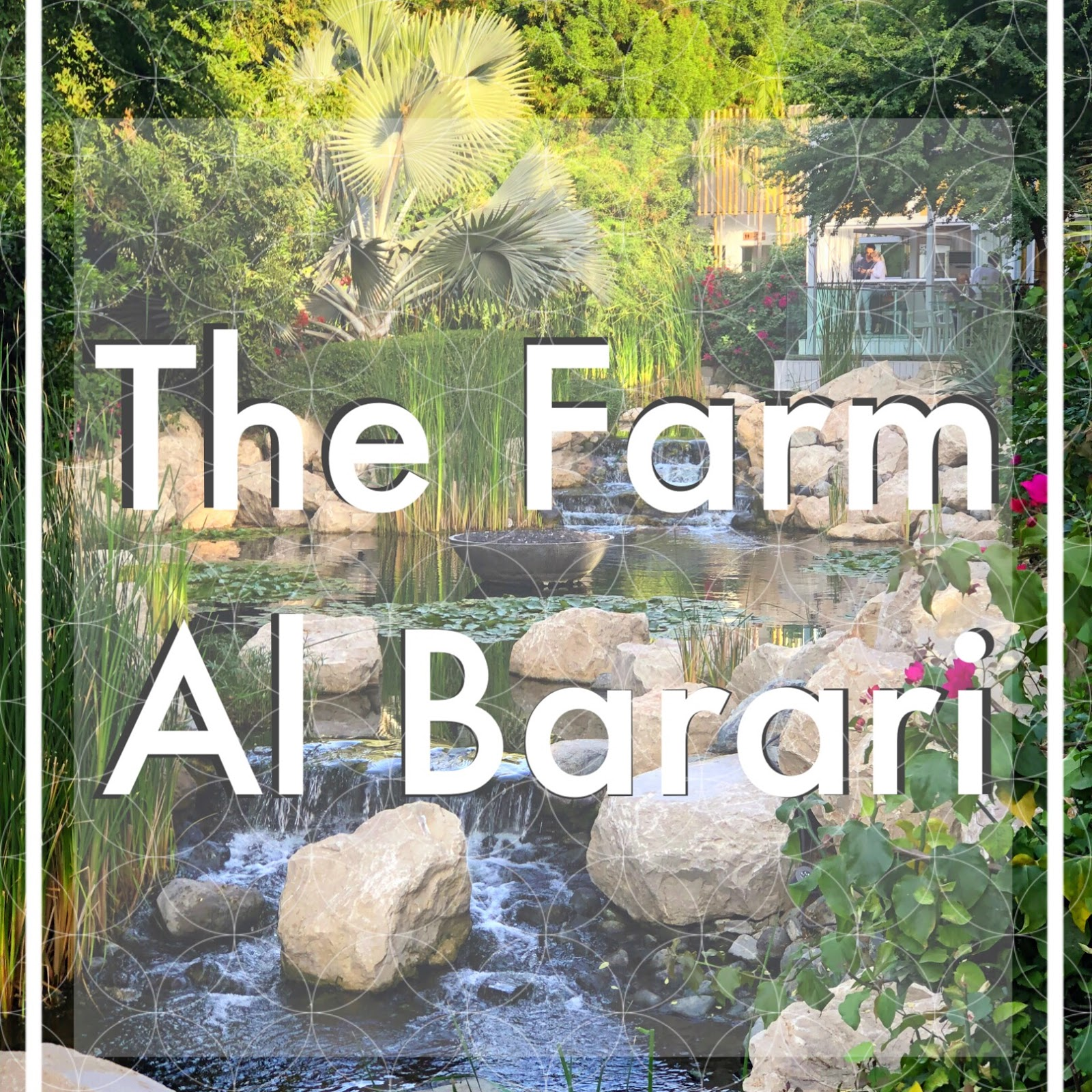 High Tea in the Desert | The Farm Al Barari