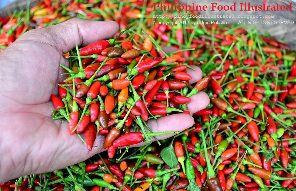 Philippine Food Illustrated: siling labuyo