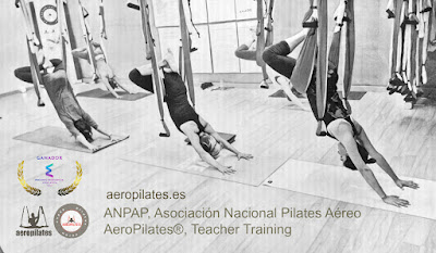 FORMACION PROFESORES AERO PILATES INSTITUTE (AEROPILATES® Y AEROYOGA® TEACHER TRAINING), GANADOR PREMIOS EXCELENCIA EDUCATIVA, UN METODO DE RAFAEL MARTINEZ, INTRODUCTOR DEL YOGA AEREO Y EL PILATES AEREO EN EUROPA Y AMERICA LATINA, SEMINARIOS, TALLERES, CLASES, CURSOS, ESPAÑA, PORTUGAL, MEXICO, ARGENTINA, PARAGUAY, BRASIL, ITALIA, FRANCE, CHILE, PERU, COLOMBIA, COSTA RICA, PANAMA