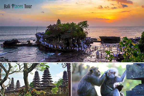 Tanah Lot Tour - Tanah Lot Temple Trip - Tanah Lot Sunset Excursion - Bali Half Day Itinerary