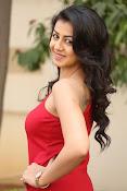 Nikki galarani latest sizzling pics-thumbnail-10