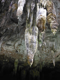 jungle survival drinking water from stalactites