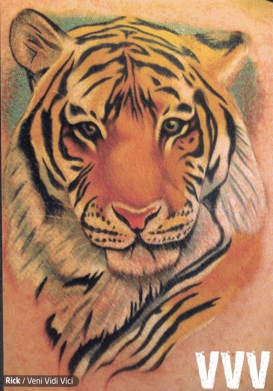 tiger tattoos 2975524 558 798