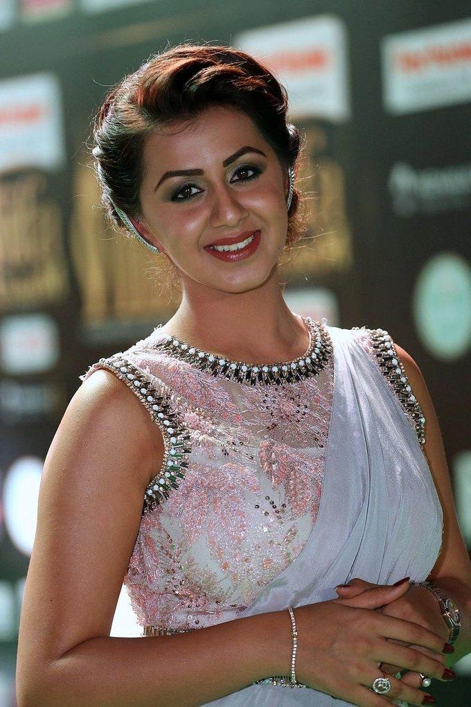Telugu Actress Nikki Galrani At IIFA Awards 2017 In Blue Saree