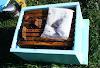 Το μεγαλύτερο πρόβλημα με τις κυψέλες φελιζόλ: Μελισσοκόμος μιλάει μέσα από την εμπειρία του