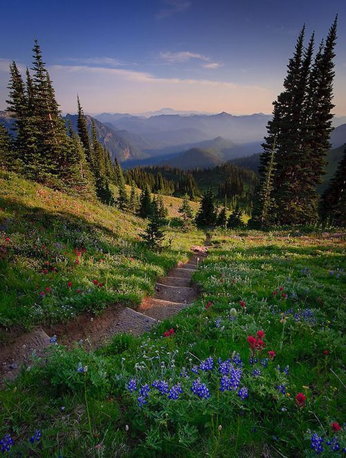 Nisqually Vista, Washington, USA