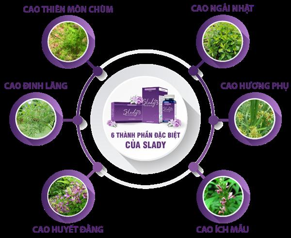 Viên uống SLady được chiết xuất hoàn toàn từ thảo dược