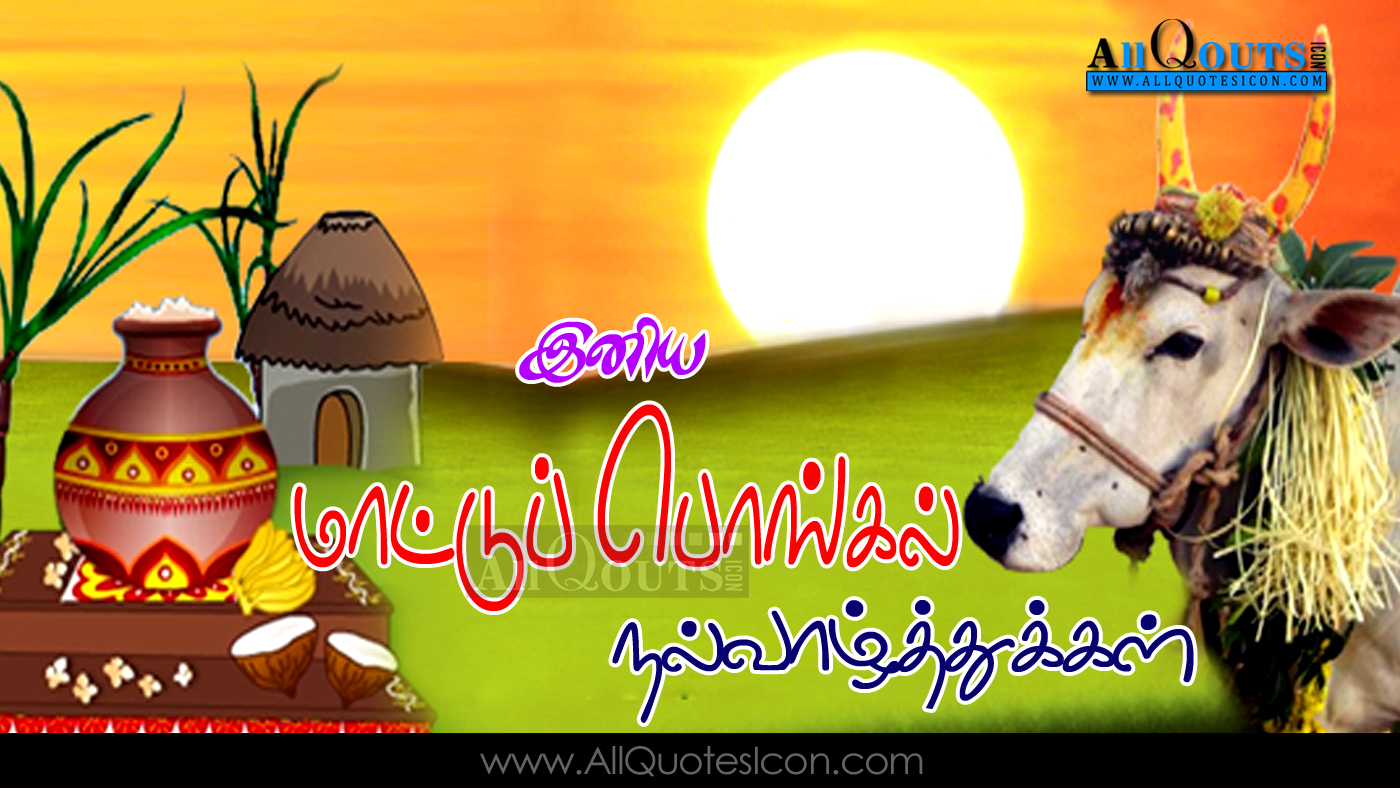 Happy pongal 2017 wishes tamil quotes hd wallpapers mattu pongal mattu pongal wishes in tamil best mattu pongal wishes nice mattu pongal wishes mattu pongal hd wallpapers mattu pongal wishes in tamil mattu pongal hd m4hsunfo