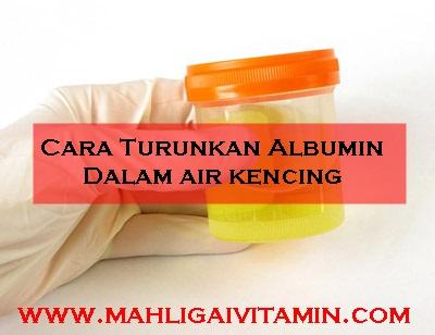 cara turunkan albumin dalam air kencing