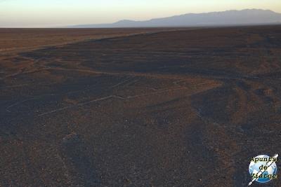 Las Manos de Nazca