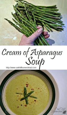 Cream of asparagus soup - a delicious and bright spot of spring on your winter table. From Oak Hill Homestead