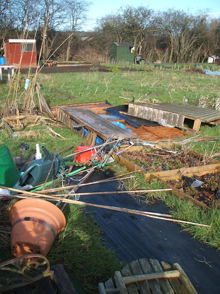 storm imogen flattens our allotment shed and scatters it across the neighbouring plot