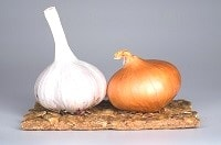 Bulbi di aglio e cipolla contro il cancro