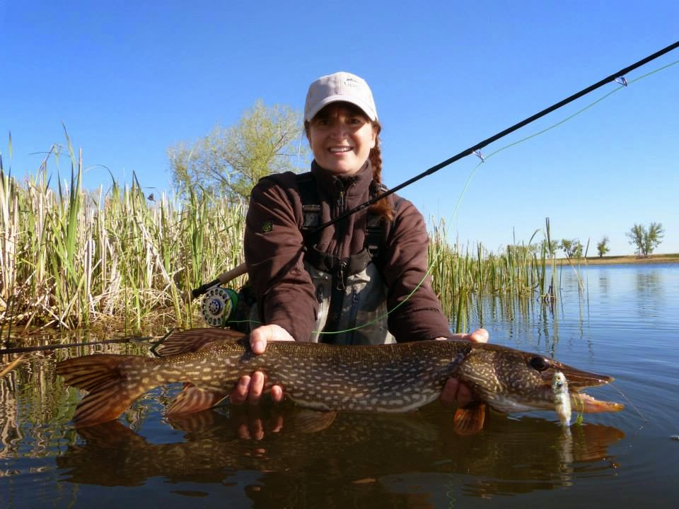 Colorado fly fishing reports for Colorado river fishing report