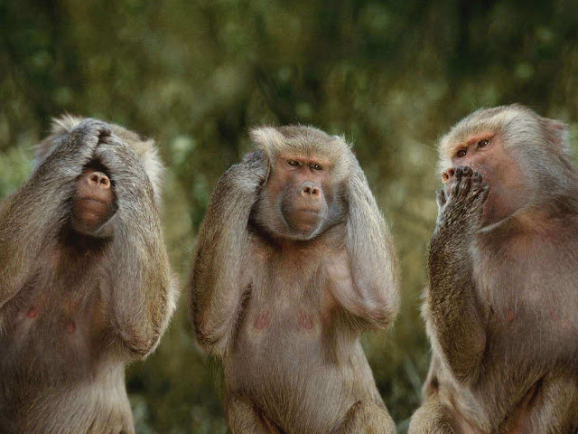 شاهد 10 خرافات شهيرة من عالم الحيوان