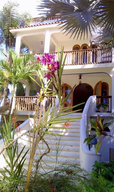 Villa, Puerto Rico, Photograph, flowers tropics