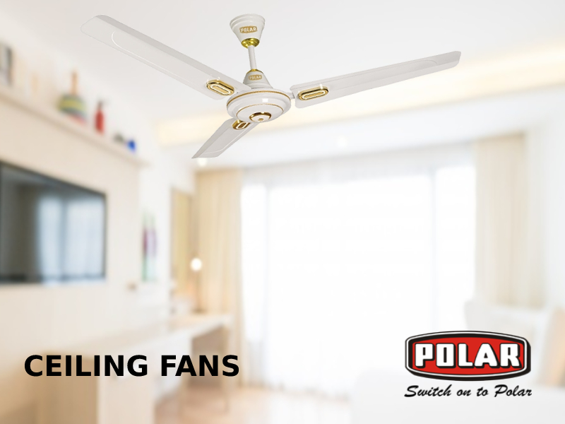 Polar Electric Best Online Electrical Appliances Electrical Home Appliances Cool Low Ceiling Rooms With Efficient Ceiling Fans