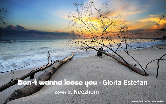 Don't wanna loose you - Gloria Estefan - Electric guitar cover by Neezhom