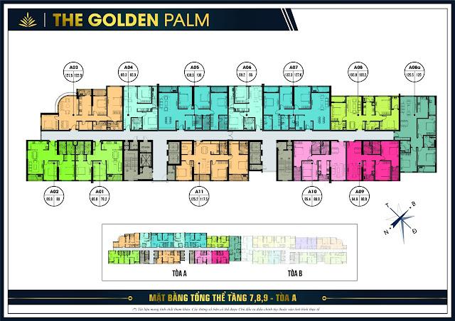 Mặt bằng căn hộ chung cư the golden palm
