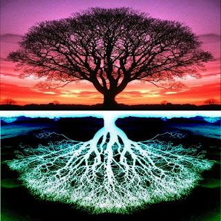 Hacia Lo Alto La Visión Del árbol De La Vida