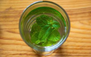 Las infusiones de menta remedio natural digestivo
