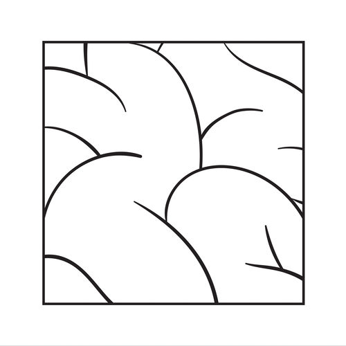 Intellexual - Shotty (feat. Vic Mensa & Sophia Black) - Single [iTunes Plus AAC M4A]