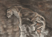 wildlife drawing, wildlife art, conte drawing