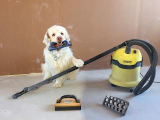 omakotitalon rakentamisen aikataulu, aikataulu, kuinka kauan kestää rakentaa omakotitalo, rakennusimuri, hiomakivi, aikataulu, clumberinspanieli, koira, raksa, rakennusblogi, rakentamisen aikataulu