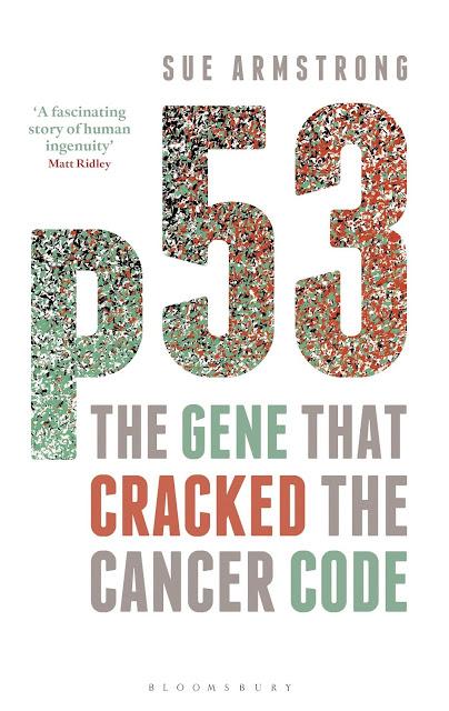 基因也有「無間道」,精彩絕倫的癌症研究史──《p53:破解癌症密碼的基因》推薦序