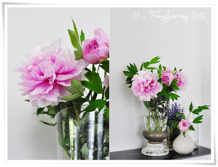 19 fridayflowerday mit rosa pfingstrosen. Black Bedroom Furniture Sets. Home Design Ideas
